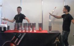 Фото: «ALeXX Bar Show» на «Мотор Шоу 2010».
