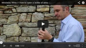 Фото: Как открыть бутылку вина без штопора.