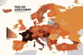 Фото: Средний размер мужского члена в Европе (инфографика).