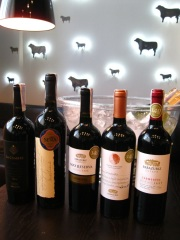 Фото: «Vina Errazuriz»: на лучшей земле — лучшие вина